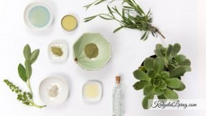 Top Skincare Channels on YouTube image of ingredients and plants with small perfume bottle.