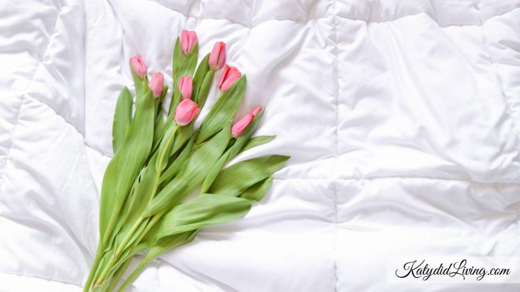 Affirmations for Endometriosis Title image   Pink Tulip bouquet on white comforter.