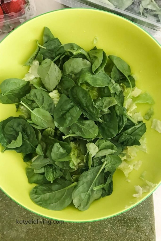 Spinach and chopped romaine in bowl.