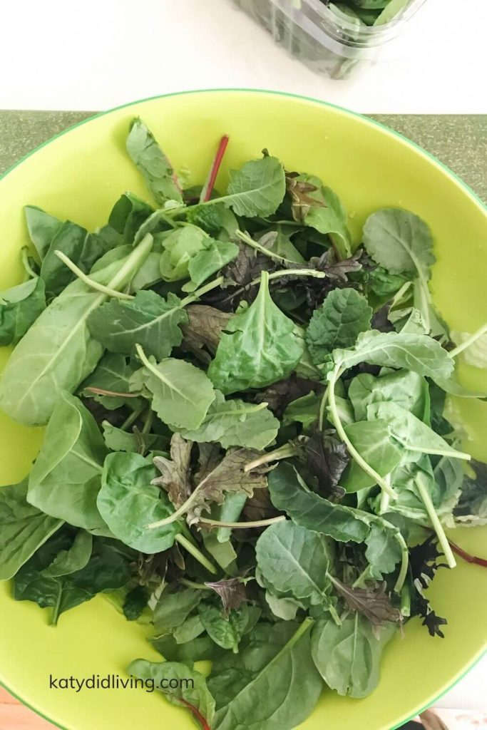 romaine, spinach and spring mix in bowl.