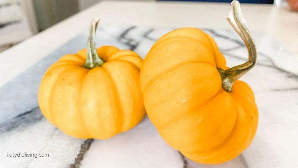 Two tiny pumpkins